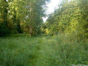 Marais de Freussin - La Vallée (17)