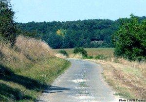 Route bordant le coteau du Paradis - Romegoux (17)